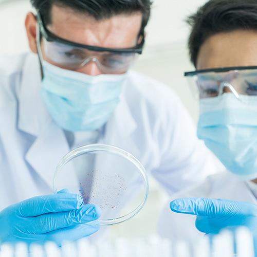 Contaminação por Listeria